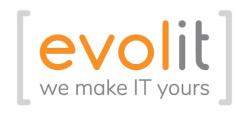 Logo Evolit Consulting GmbH