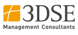 Logo 3DSE Management Consultants GmbH